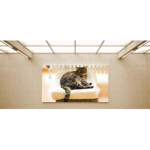 Pihenő cica - vászonkép, vászonfotó, vakráma 45 × 30 cm
