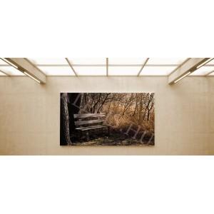 Pad az erdőben - vászonkép, vászonfotó, vakráma 45 × 30 cm