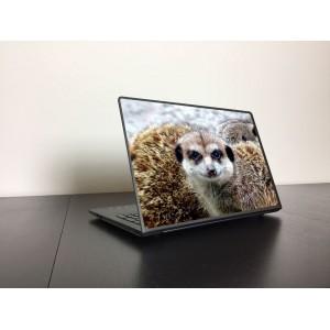 Szurikáta laptop matrica